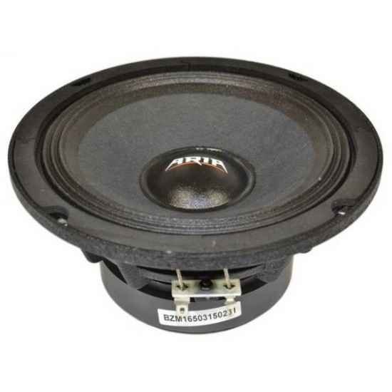 Эстрадная акустика Aria BZM-165