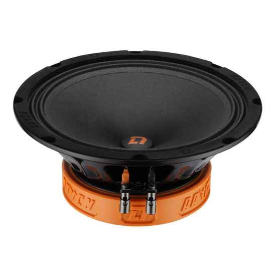 Коаксиальная акустика DL Audio Raven 200